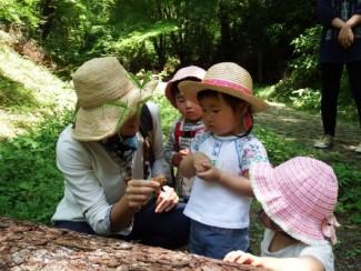 のびのび子育て森じかん~どんぐり月曜コース~ @ 県立森林公園内