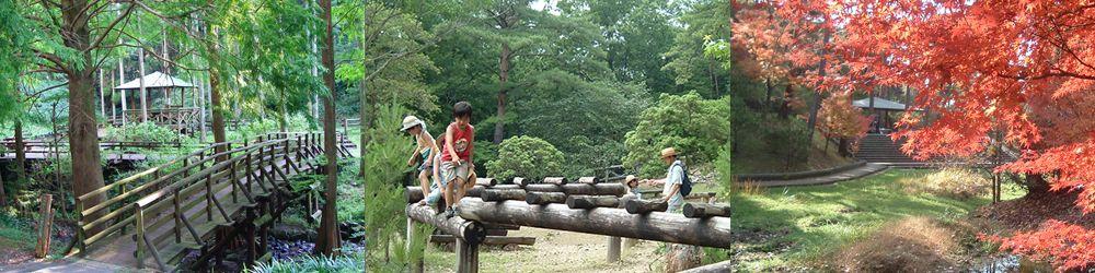 散策・広場 公園内のいろんな自然の顔を見に行こう! 公園内には散策、森林浴にぴったりな遊歩道も数多く整備され、あずまや11棟、展望台2棟があります。